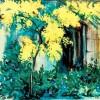 C. Selves-Arbust de Mimosa